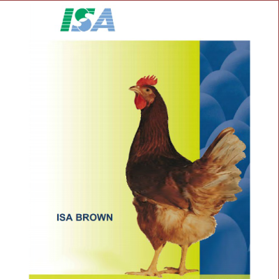 Isa-brown