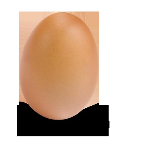 Photo-egg-3