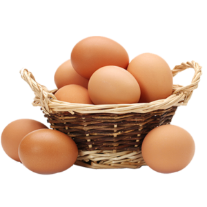 ¿Es rentable producir huevos?