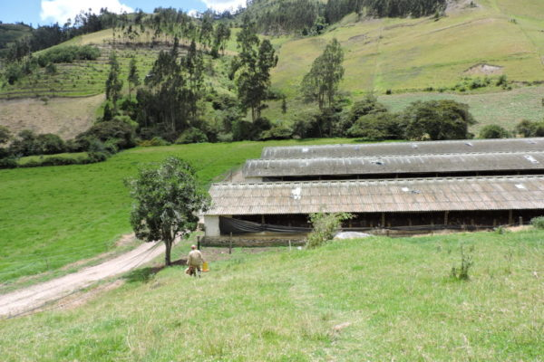 Choconta, Cundinamarca